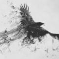 RavenSpiral